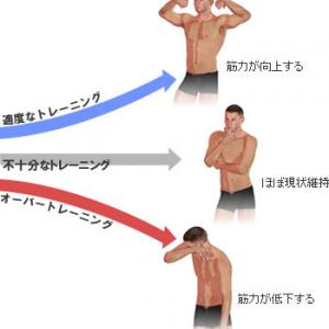 ■筋肉痛が長引くのに筋肉がつきません。これってオーバートレーニングですか?