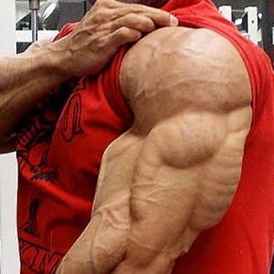 【画像】男ならこれくらいの筋肉は欲しいよな????