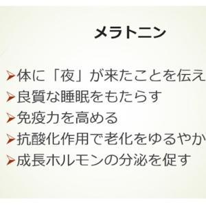 メラトニン タイムリリース 5mg☆夜行性sachiが試してみた♩♩