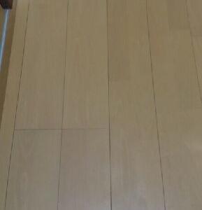 【脱 汚部屋Part1】洋室&クローゼット_4
