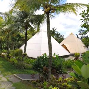 クタからウブド移動日 Shiwa Rudrasha工房 Pyramids of Chi, Bali