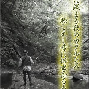 渓流カタルシス「2年2ヶ月ぶりの釣行」