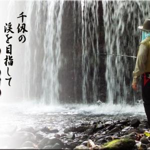 独り釣行「幽玄岩魚」