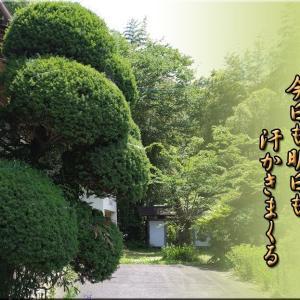 我家の「庭木剪定」