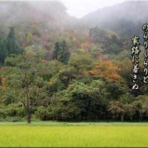 山王山温泉「瑞泉郷」霊験の露天湯