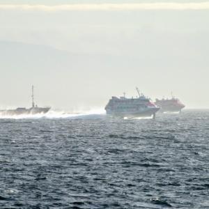 2020.08.10 船活 館山で「しらせ」とジェットフォイル2隻並走の撮影