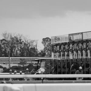 【競馬】京都競馬場  GIII 京都牝馬S, つばき賞(500万以下)