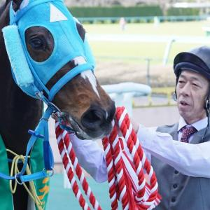 【競馬】阪神競馬場 GII 阪神スプリングジャンプ