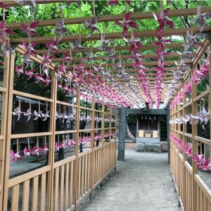 【インスタ映え】カメラを持った女子が集まる「現人神社」が大人気!