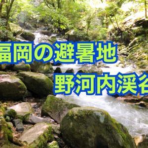 【福岡の避暑地】日帰りドライブで穴場の「野河内渓谷」に行って涼む!