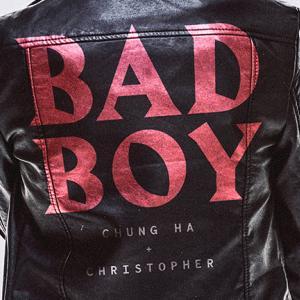 【CHUNG HA】チョンハーモニーと近況【Bad Boy】