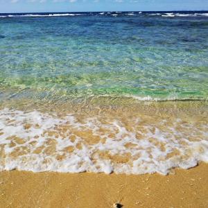 沖縄旅行に行ってきました。気候も良く何よりでしたが…