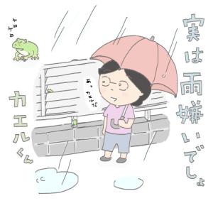 雨とカエル、わたしの仮説