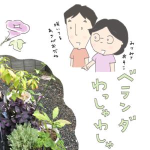 わがやの緑(植物)ちゃん