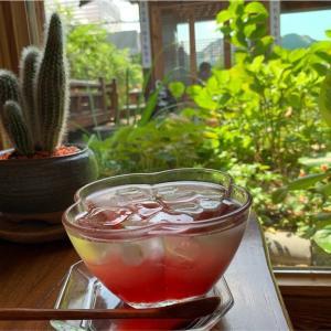【三清洞】北村韓屋村からも、景福宮からも近い 中庭が素敵なくつろぎの韓屋カフェ 차 마시는 뜰