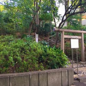 爽やかな秋空の下で神社巡り! 猿楽神社