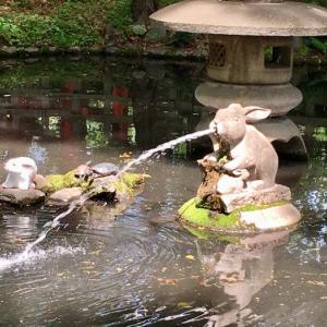 北から南へ浦和を横断神社巡り! 調神社