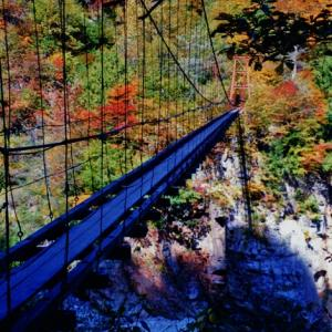 酒を飲むほど美しい!? 絶景の中の人道橋(四国、関西、九州)