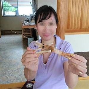 地元の新鮮な魚が食べれたお店「めし 舟多慶」閉店!!