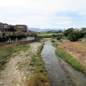 大阪 汐ノ宮 川の中に湧く冷泉