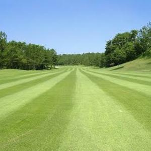 ゴルフのルール/構えたらボールが動いた、揺れた/素振りをしたらボールに当たった_ジェネラルエリア内