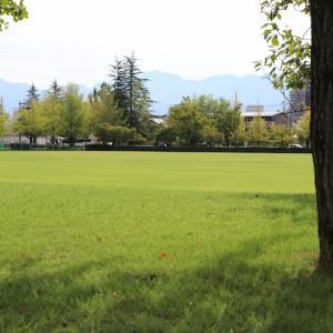 緑の中を気持ちよく散歩しました