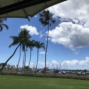 子連れハワイ ノースショア散策 ハレイワジョーズ・マツモトアイス・ドールプランテーション 2019