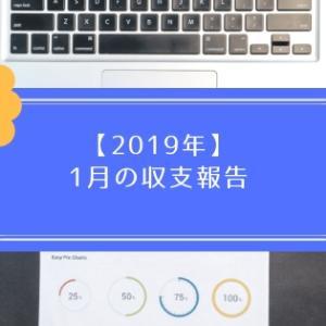 【2019年】1月の収支報告【主婦のFX】
