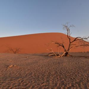 真っ赤な砂漠