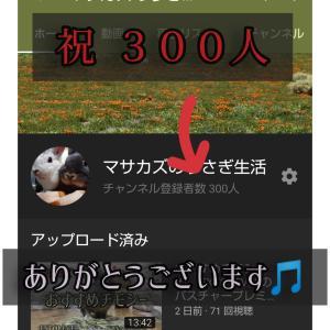 チャンネル登録300人
