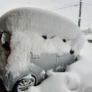 2021年最初の更新と大雪