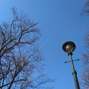 予防接種といつかの飛行機雲。