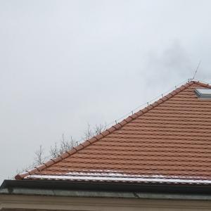 初雪。in プラハ