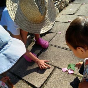 長男とボヘミアの小さな尺取り虫とお花の色水と鳶のロックオン。