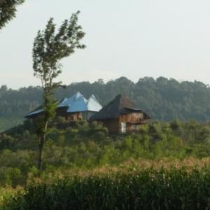 ケニアの山間で過ごす平和すぎる1日 ~続き~