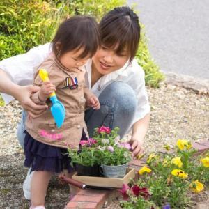 【20代の転勤族】が庭付き一戸建てを購入した理由とは?