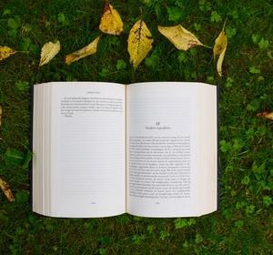 英検受験の勉強のために多読がしたい!レベル別オススメの洋書を教えて!