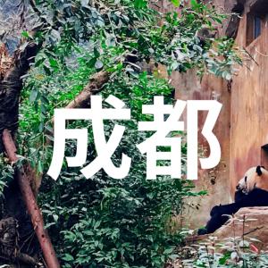 パンダの故郷!四川省成都のおすすめ観光スポット5選【中国旅行記】
