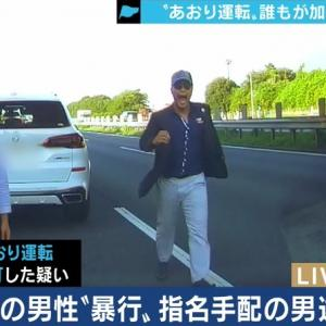 宮崎容疑者は、ロシアで煽り運転ができるか?