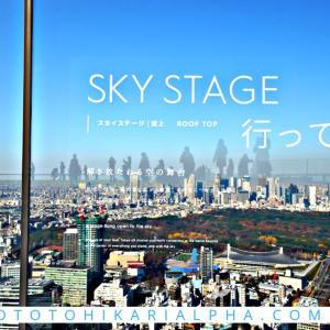 α7RⅢとSEL1224Gで撮る、「渋谷スカイ」地上230m