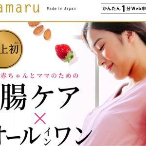mamaru(ママル)葉酸サプリを飲むのは安定期以降がおすすめ!