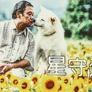 【星守る犬】犬とおじさんの幸せなロードムービー