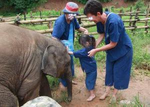 象の赤ちゃんとふれ合える!「象の保育園」で子象と一緒に泥んこ遊び体験!【タイ子連れ旅29】