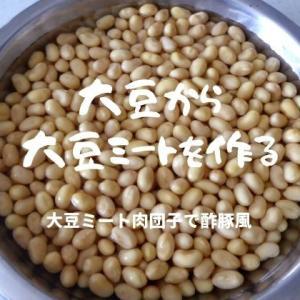 手作りで安い!無添加!大豆から大豆ミートを作ってみた。
