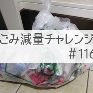 【ごみ減量チャレンジ#116】リボベジ小松菜、順調に育つ。