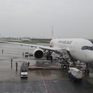 デビューしたてのJAL AirbusA350に搭乗してみた話