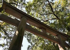 神社にお詣り