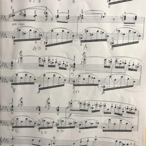 3日ぶりのピアノ練習。ノクターンOp.27-2楽譜をよく見直しながら。