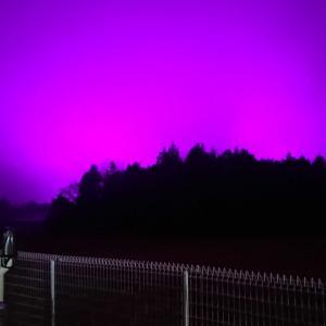 釣行記31 「バレーナイター」と「千葉市の紫色の夜空」