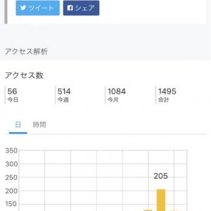 pv1000達成♡ミニマリスト女子ランキング1位♡この記事で29記事目♡